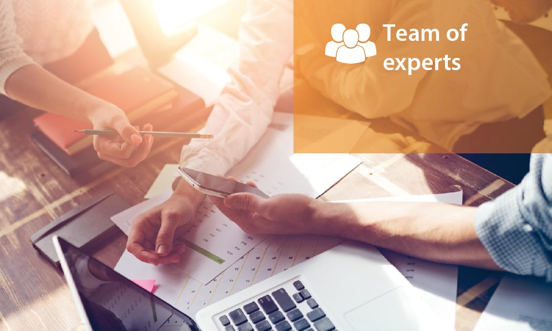 Team of expert